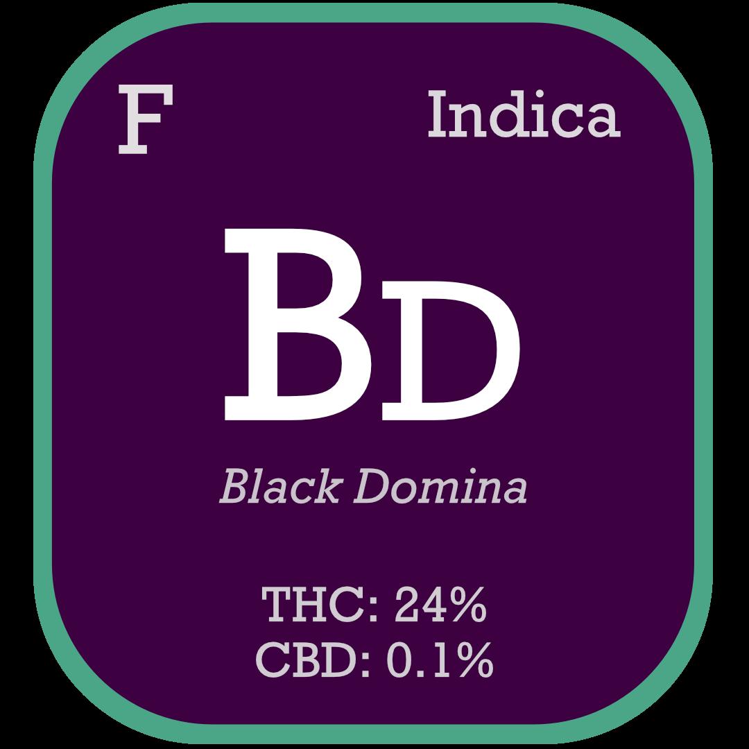 Black Domina Feminized Seeds